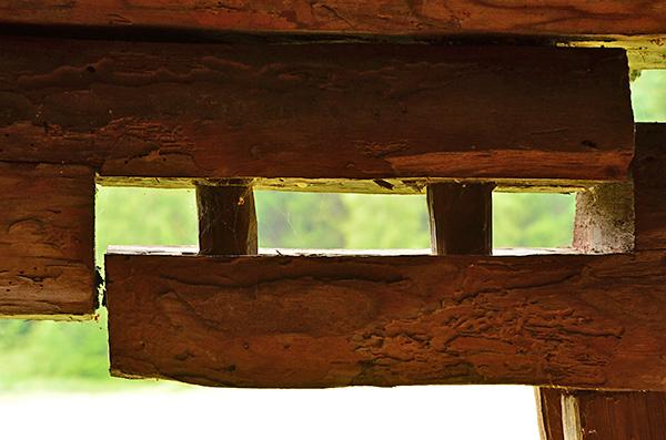 Här har sammanfogningen av två bjälkar glidit isär under århundradenas lopp, och man ser träpluggarna, dymlingarna, som håller ihop skarven.