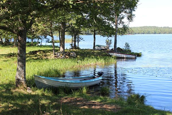 Beatrice Gomér: (Det) ekar vid Långsjön