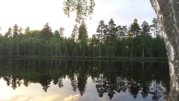 Emma Thompson Nydal_Fiskekväll vid sjön