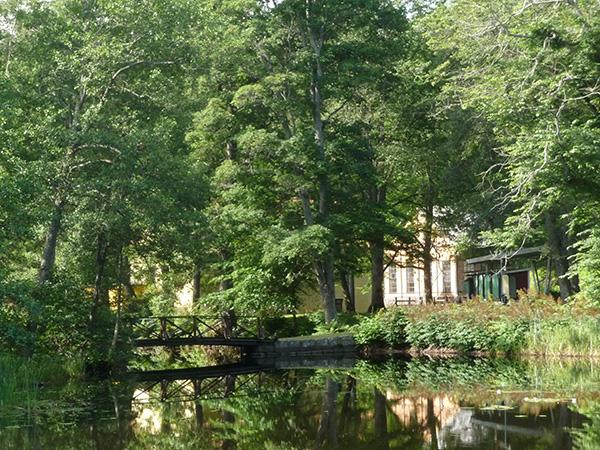 Petra Praag: Sommargrönska i parken