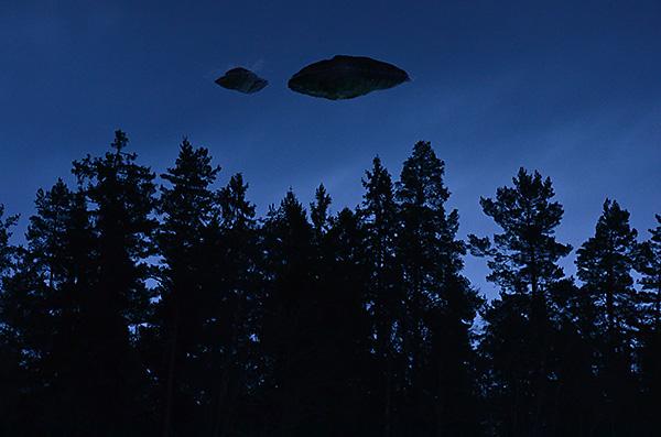 2015-01-18 Skogsvandring med trädalg och ufo 20