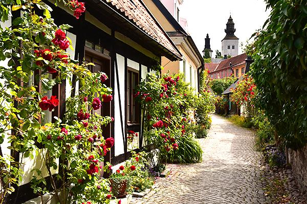 2015-08-06 Gotlandsbilder till bloggen  01