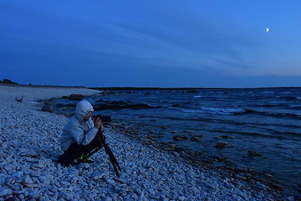 2015-08-06 Gotlandsbilder till bloggen  20
