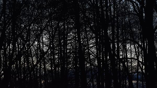 I själens mörka natt