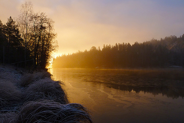 Frostmorgon på jobbet