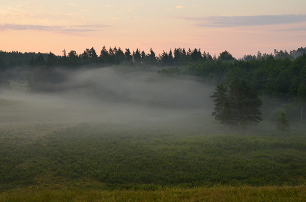 2016-06-25 Morgonfototur Glabo, Svinnersbo 14