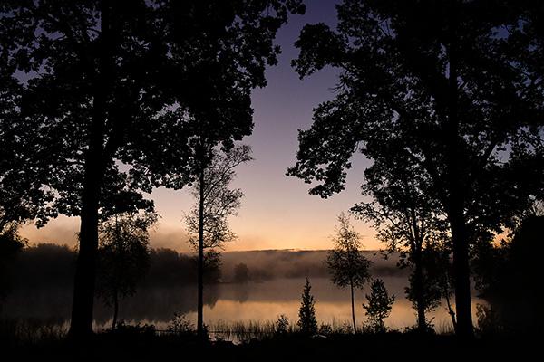 Dimmig höstmorgon